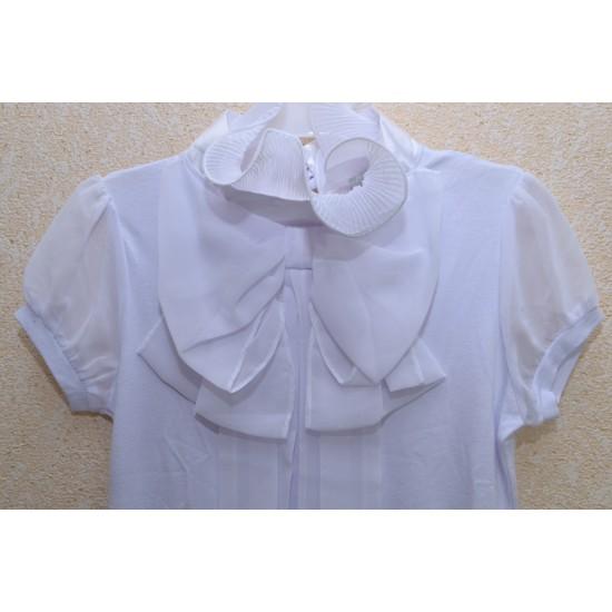Блуза - 1733 - 31289